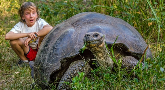 galapagos adventure boy with giant tortoise