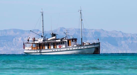 baja boat sea cortez mexico