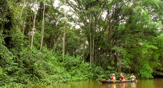 peru amazon exploring rainforest by boat