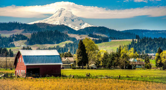 oregon mt hood barn farm