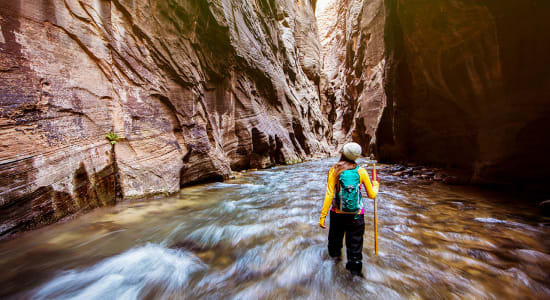 usa utah zion hiker the narrows