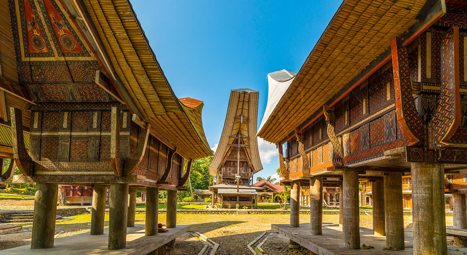 8 Days Trekking West Sulawesi & Toraja