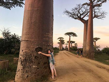 Madagascar tourist hugs gigantic tree at Avenue of the Baobabs