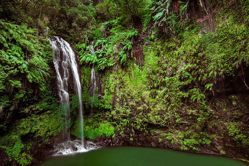 Waterfall and swimming hole surrounded by greenery at Amber Mountain National Park