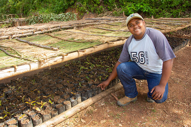 Environmentalist with hiaroke tree seedlings ready for planting in Andasibe National Park