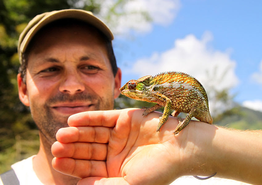 Smiling tourist in Madagascar with colorful chameleon on his hand