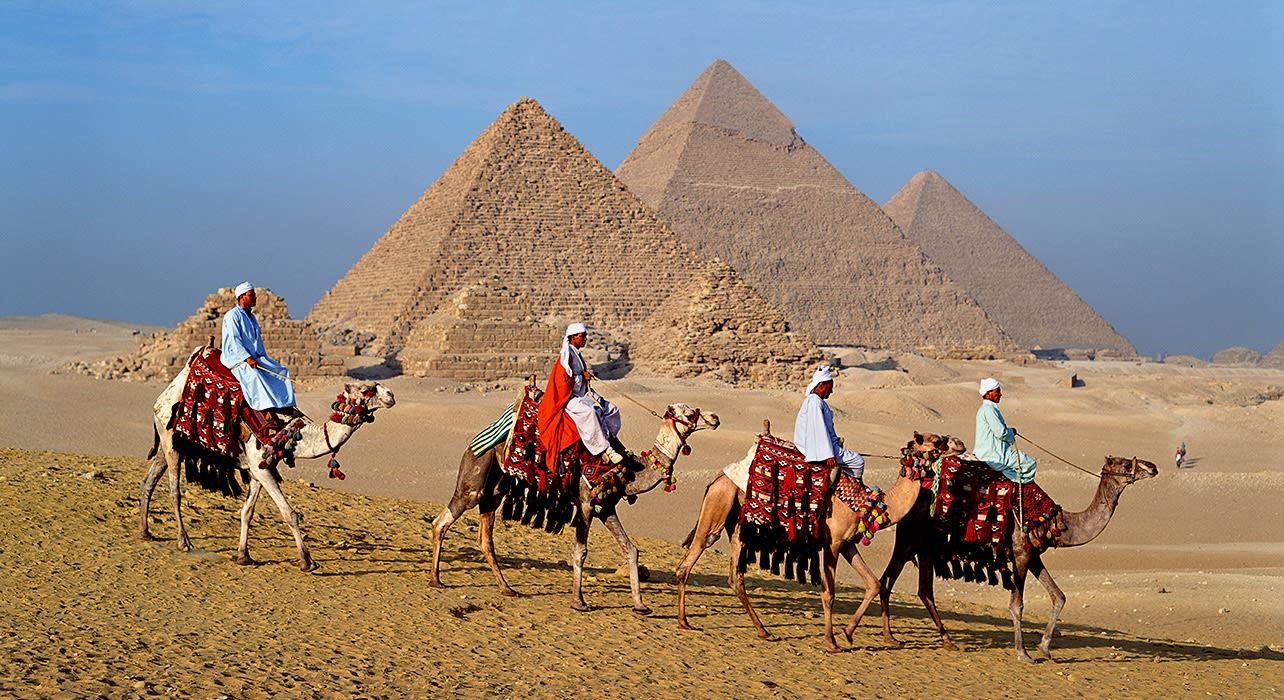 giza pyramids camel