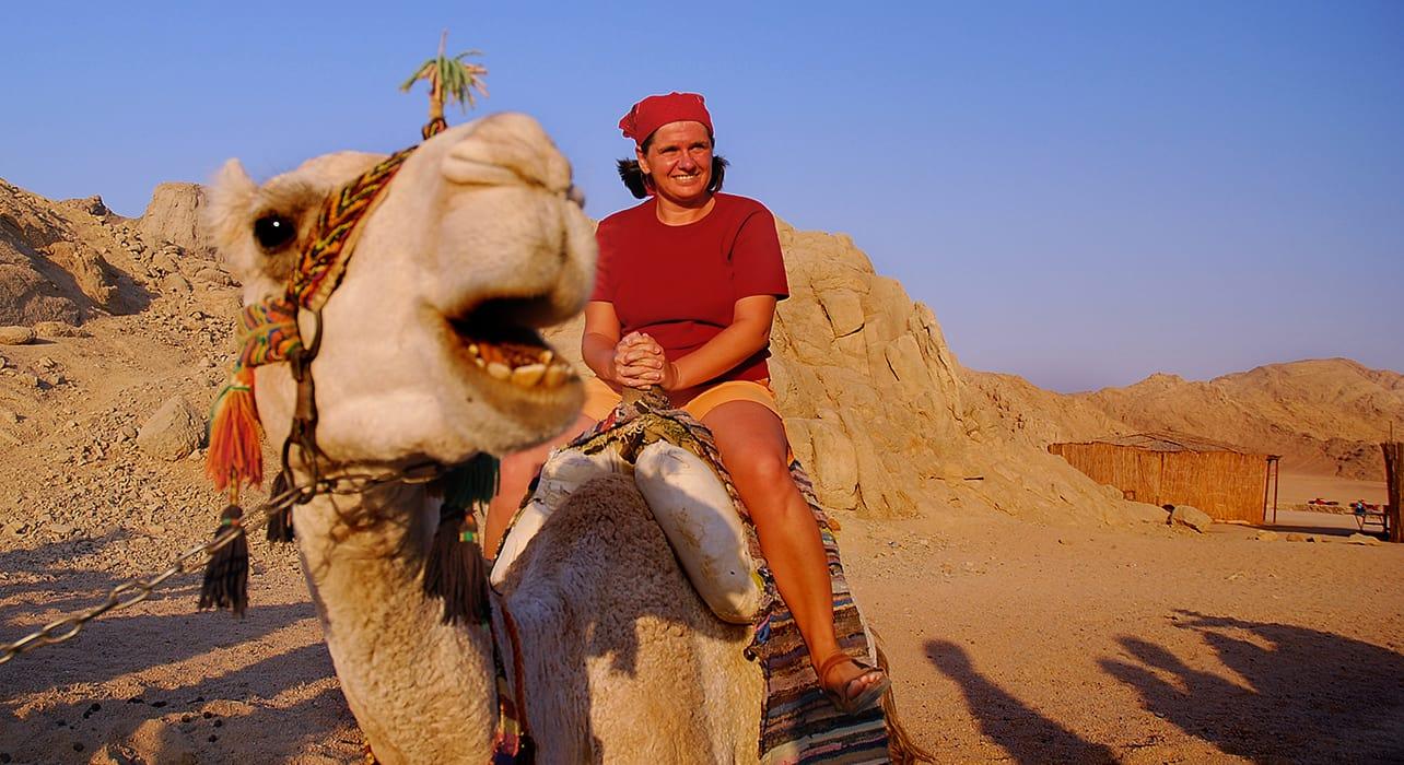 jordan camel desert