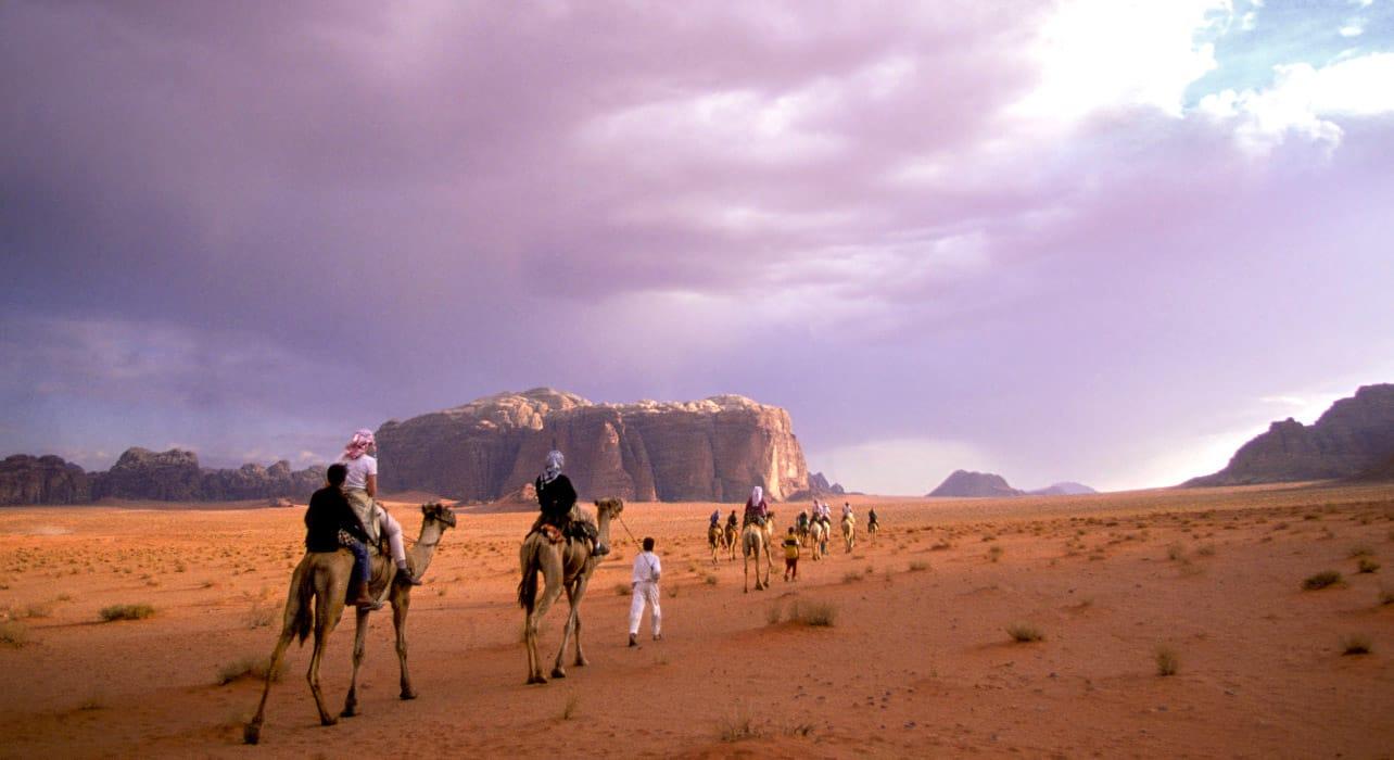 jordan wadi rum camels