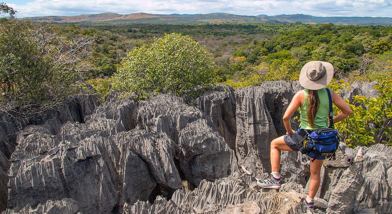 madagascar ridge rock bushes trek