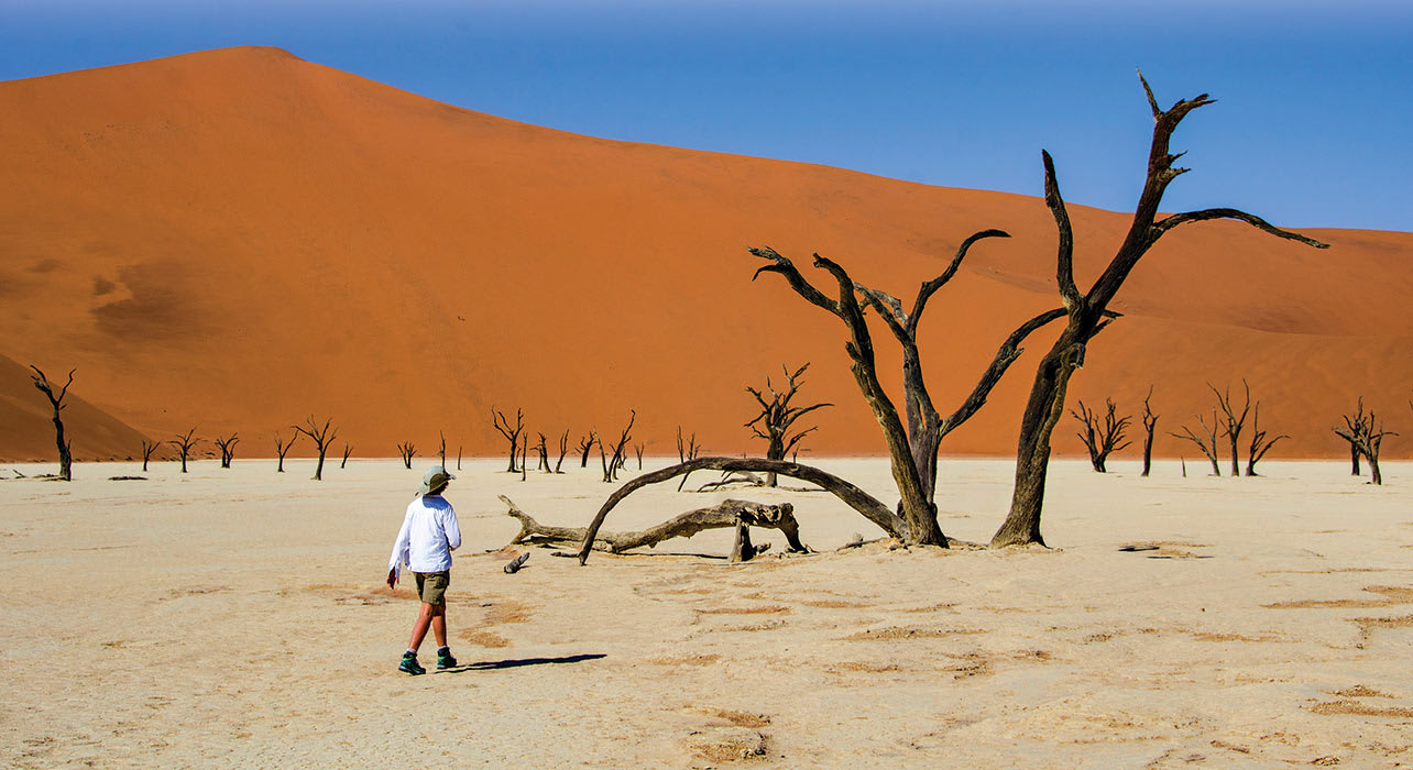5 slide sossusvlei namibia dune tree person africa pano