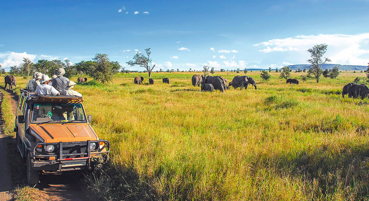 botswana south africa victoria falls game drive