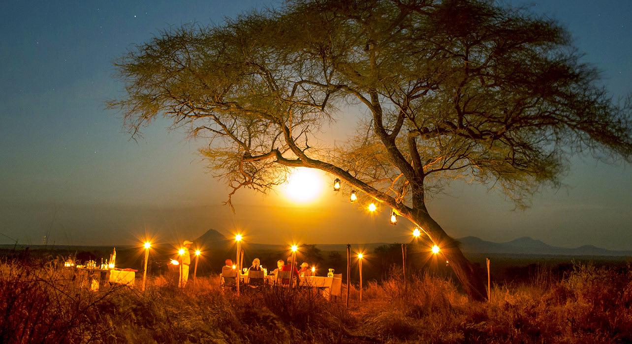 wildlife explorer dining serengeti