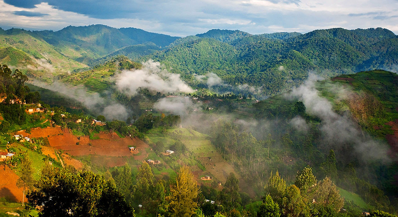uganda mountain valley mist