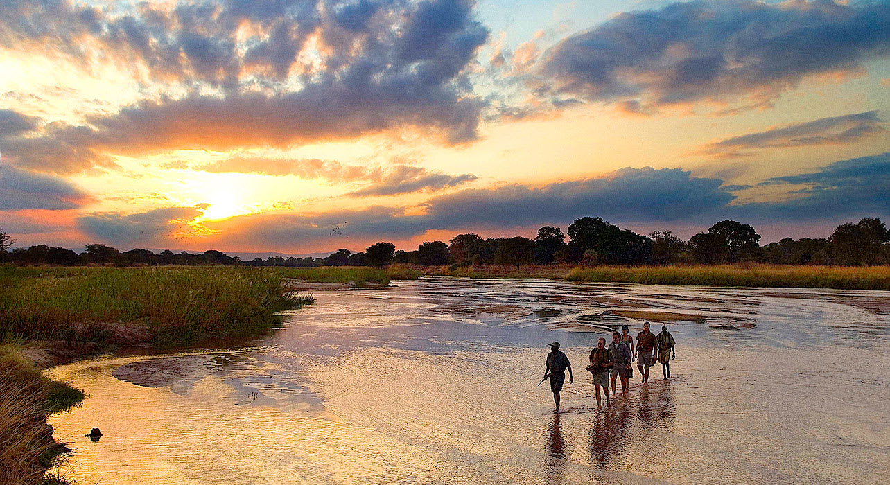 zambia walking safari sunset