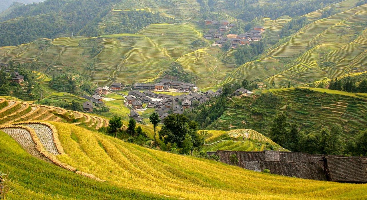 2 slide china dazhai village rice paddies terraced field pano