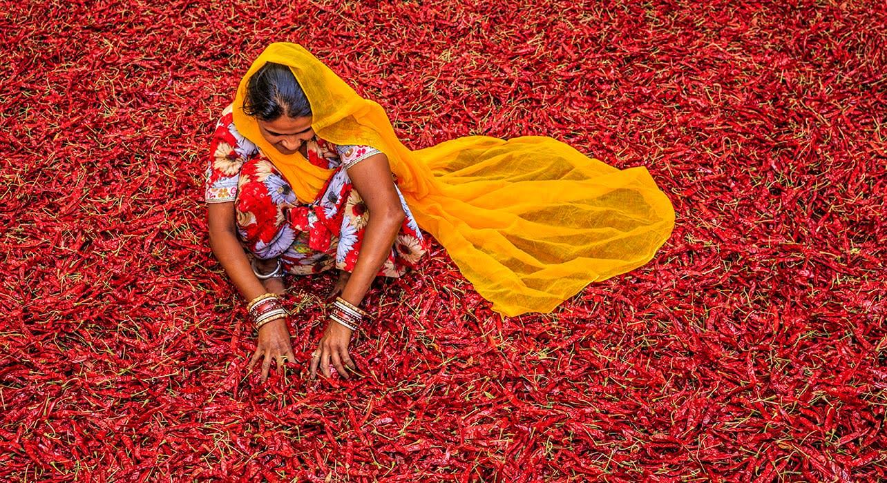 india rajastan woman chilies