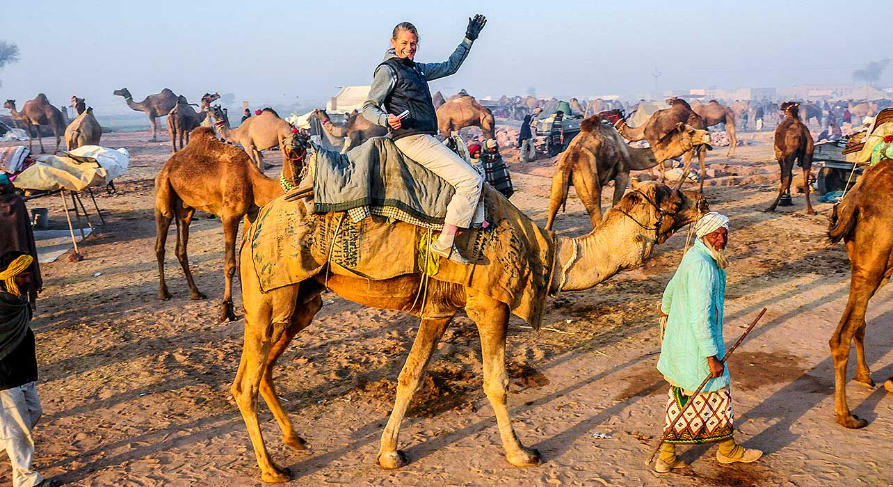 pushkar camel ride