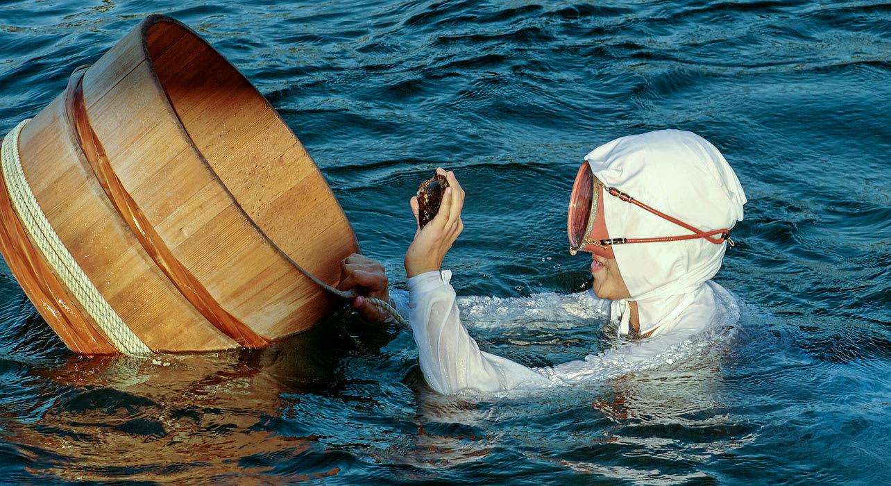 japan pearl diver