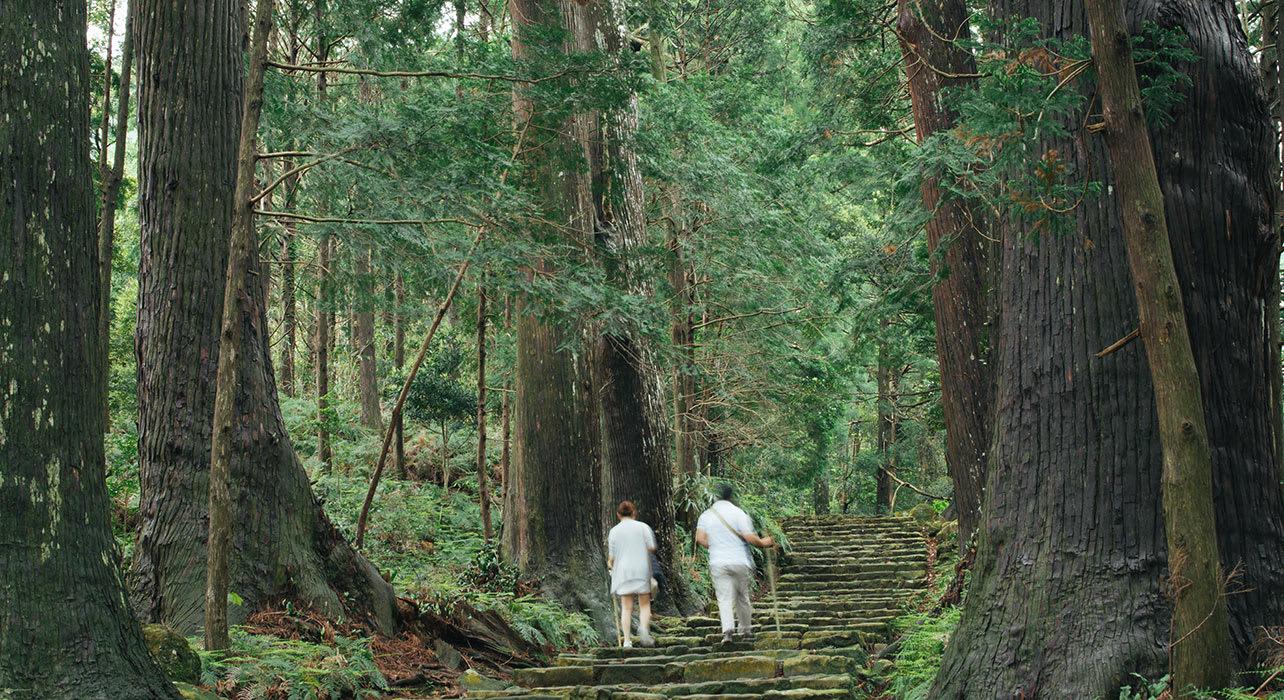 japan pilgrims kumano nachi taisha