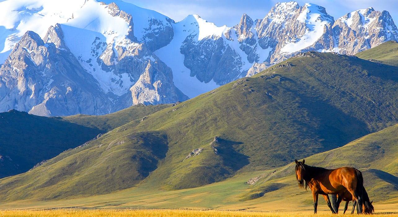 kyrgyzstan mountains horses valley central asia
