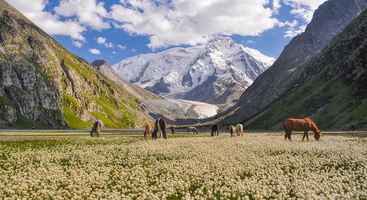 6 slide tien shan mountains kyrgyzstan pano