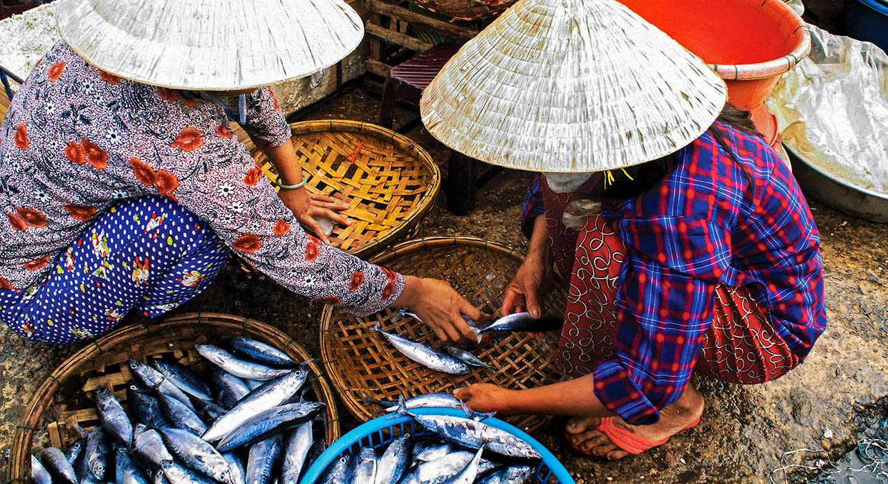 mekong women buying fish in a local market