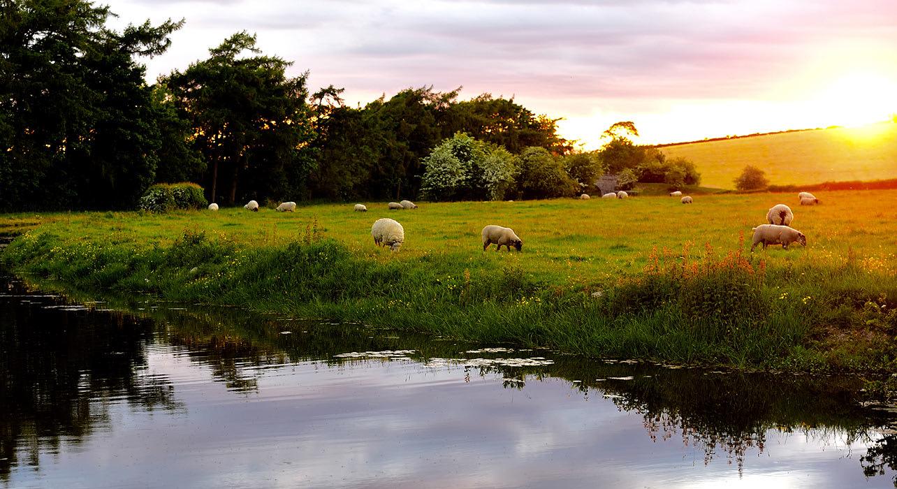 3 slide england lake district sheep canal sunset pano