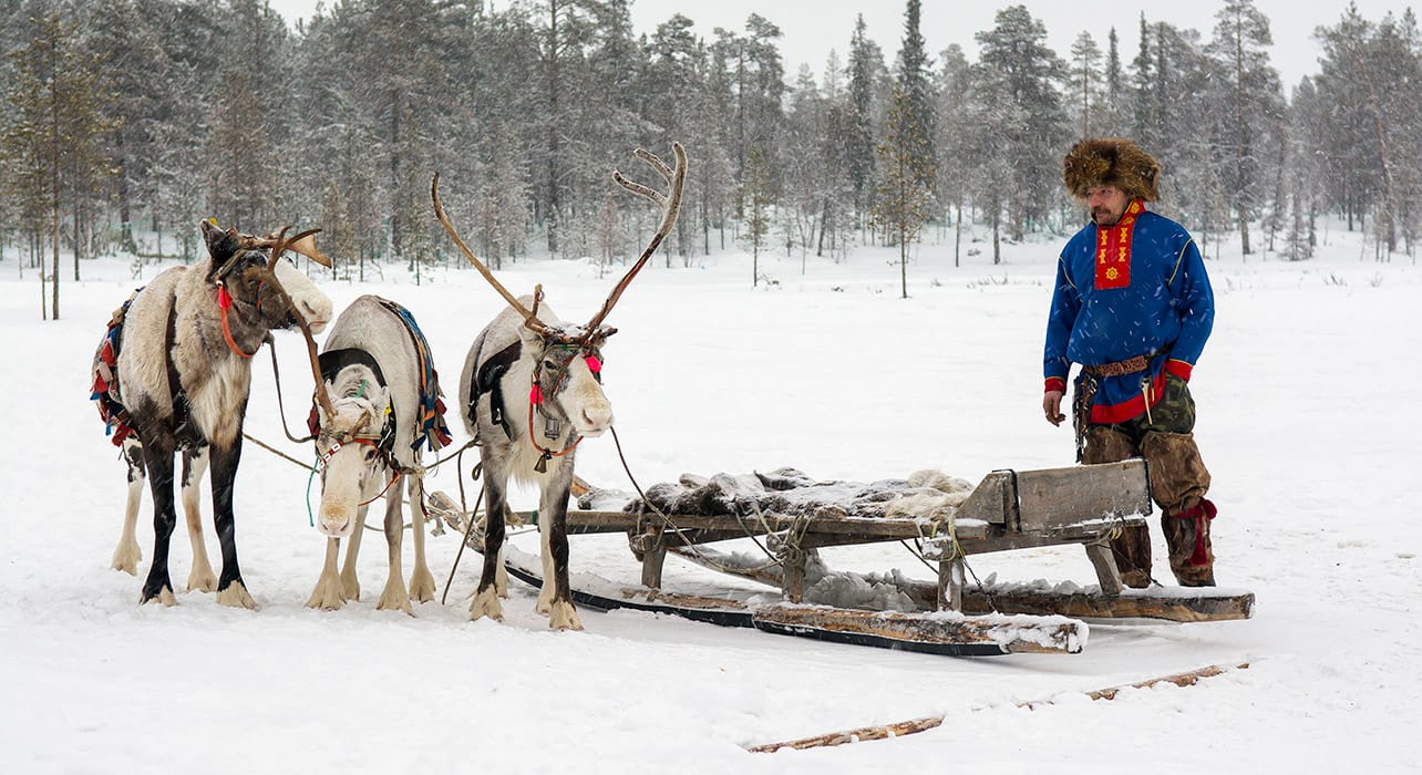 finland lapland reindeer sami traditional costume