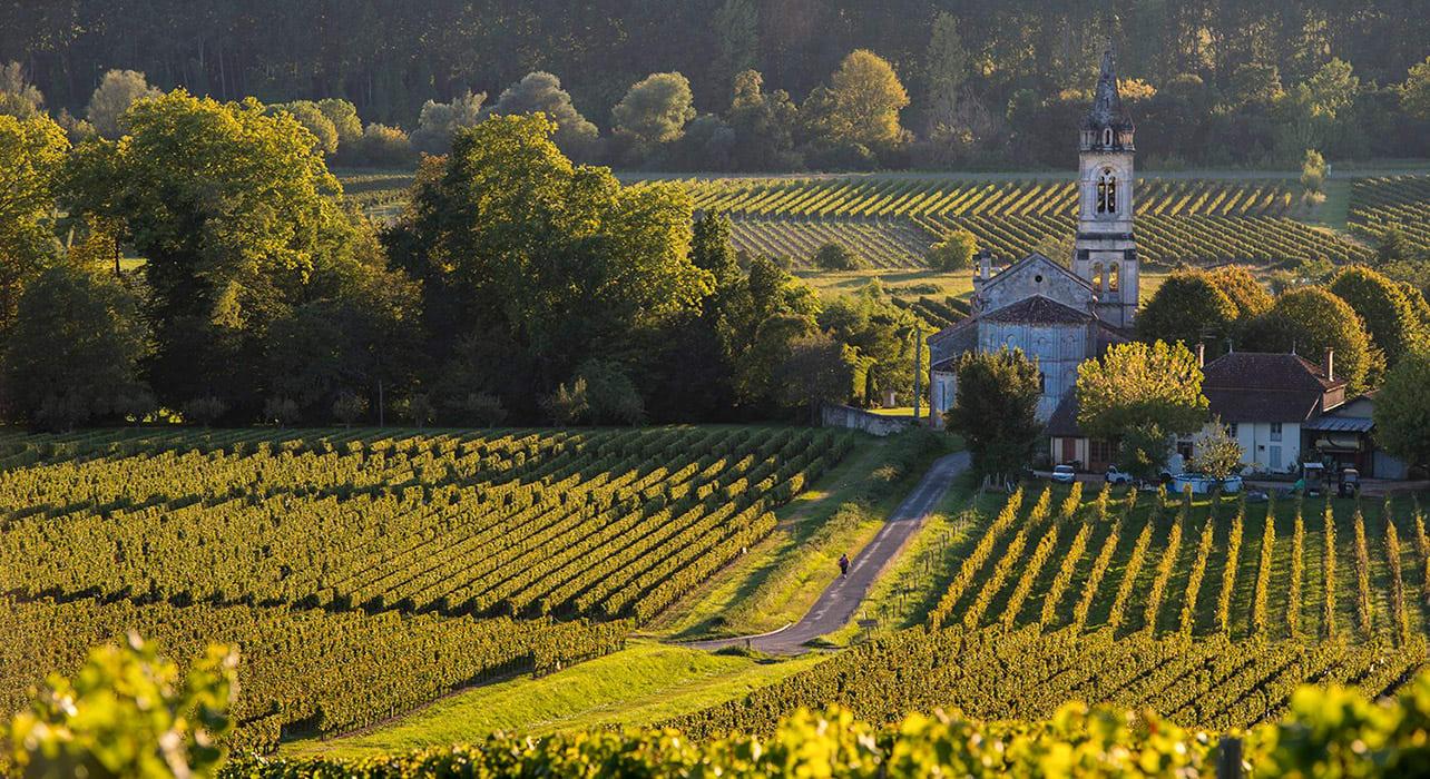 bordeaux france sauternes wine region