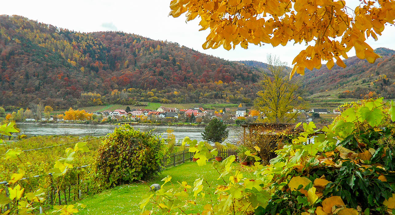 danube fall foliage valley river
