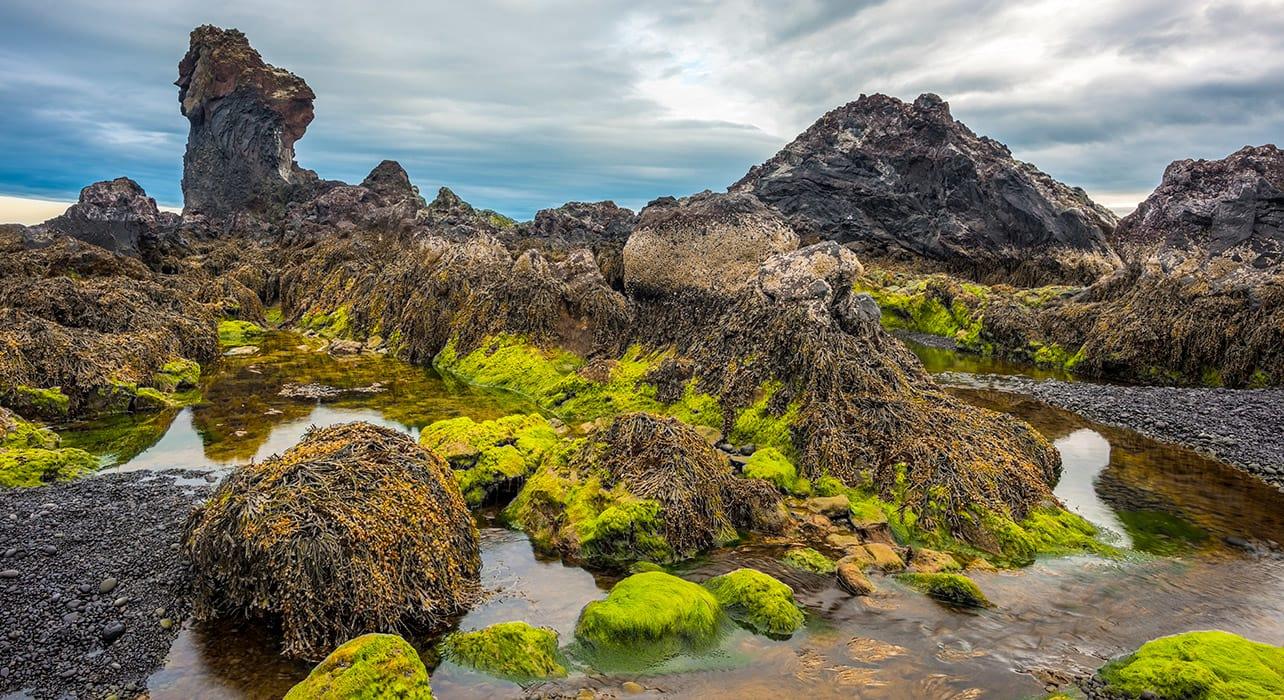 iceland djupalonssandur beach lava beach snaefellsnes park