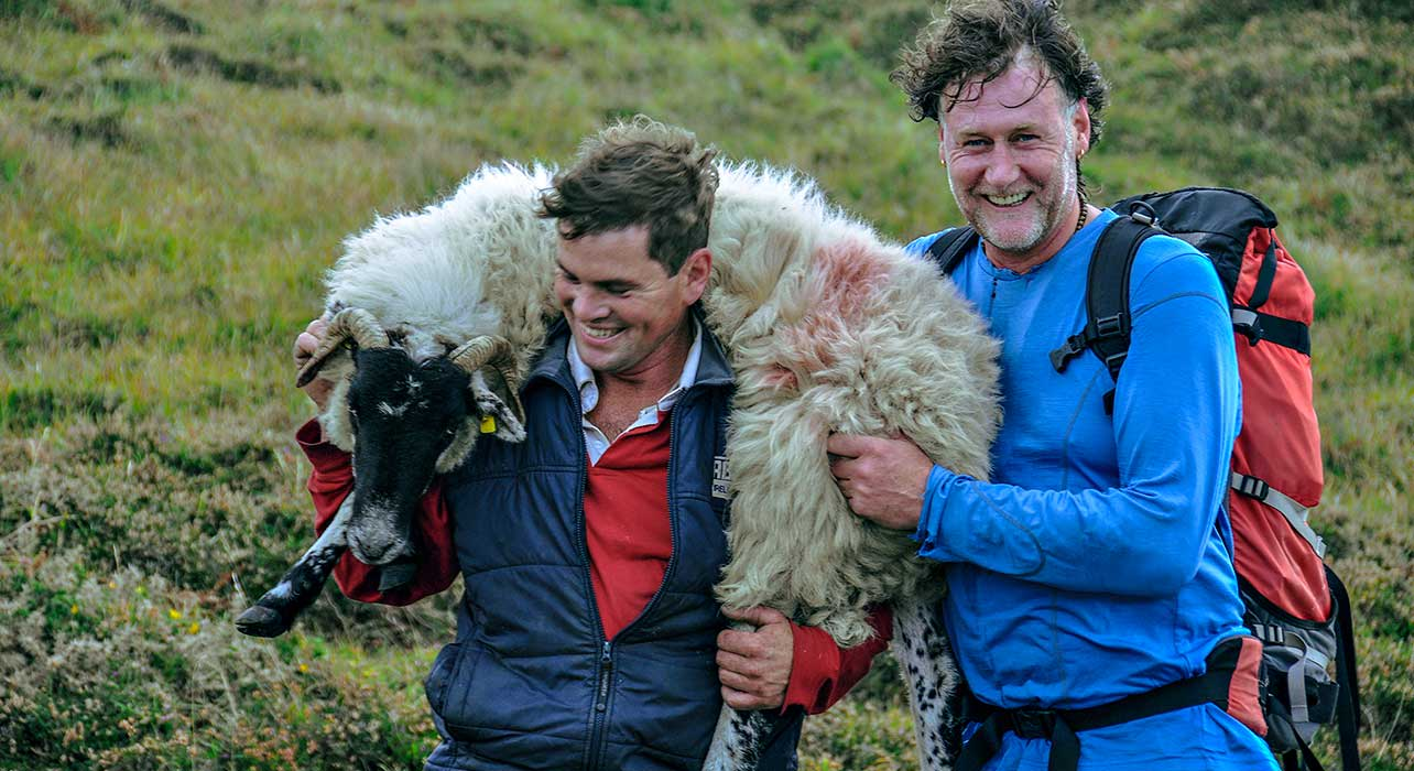 ireland sheep rescue con moriarty
