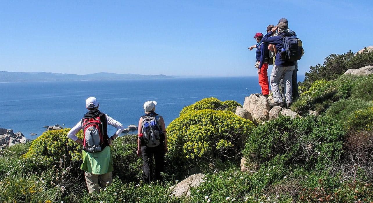 corsica sardinia group checking out view
