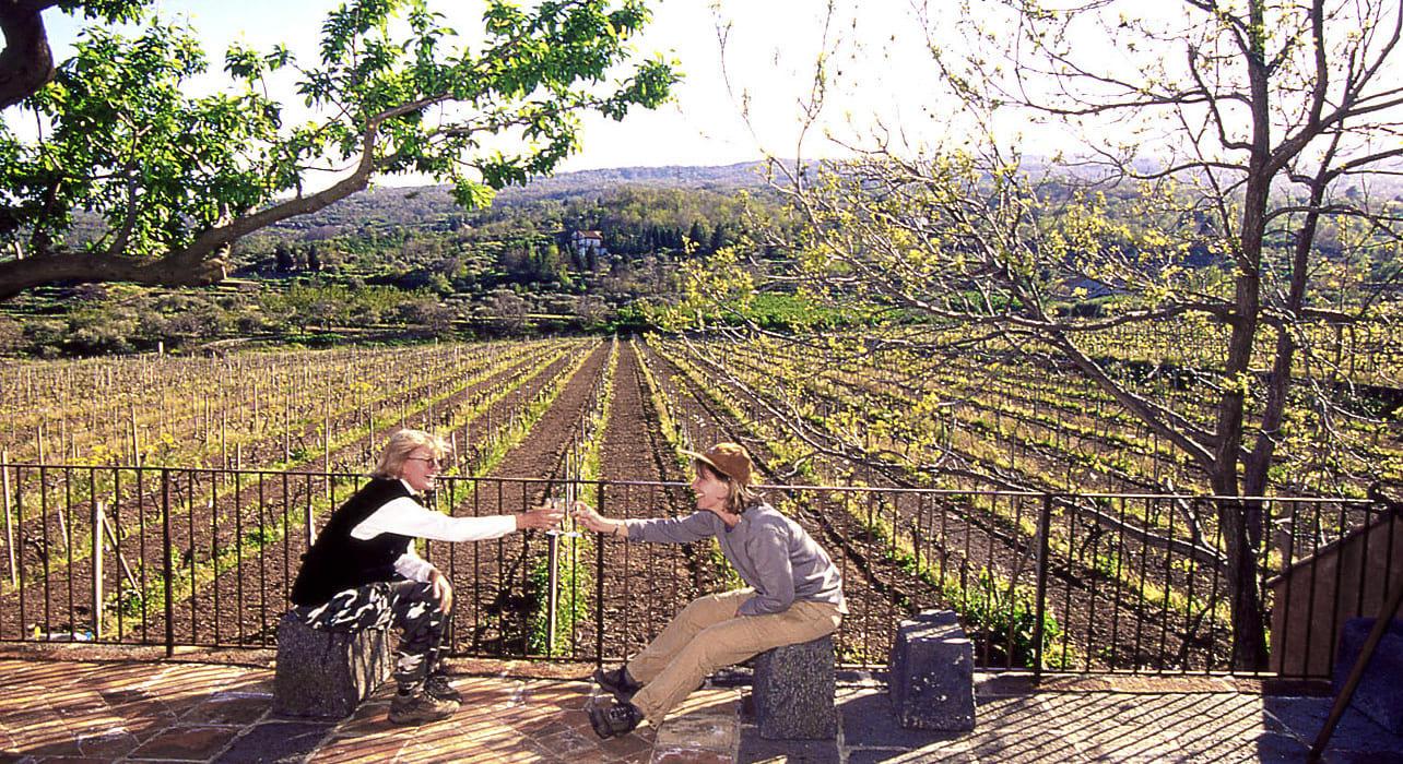 5 slide wine tasting pano
