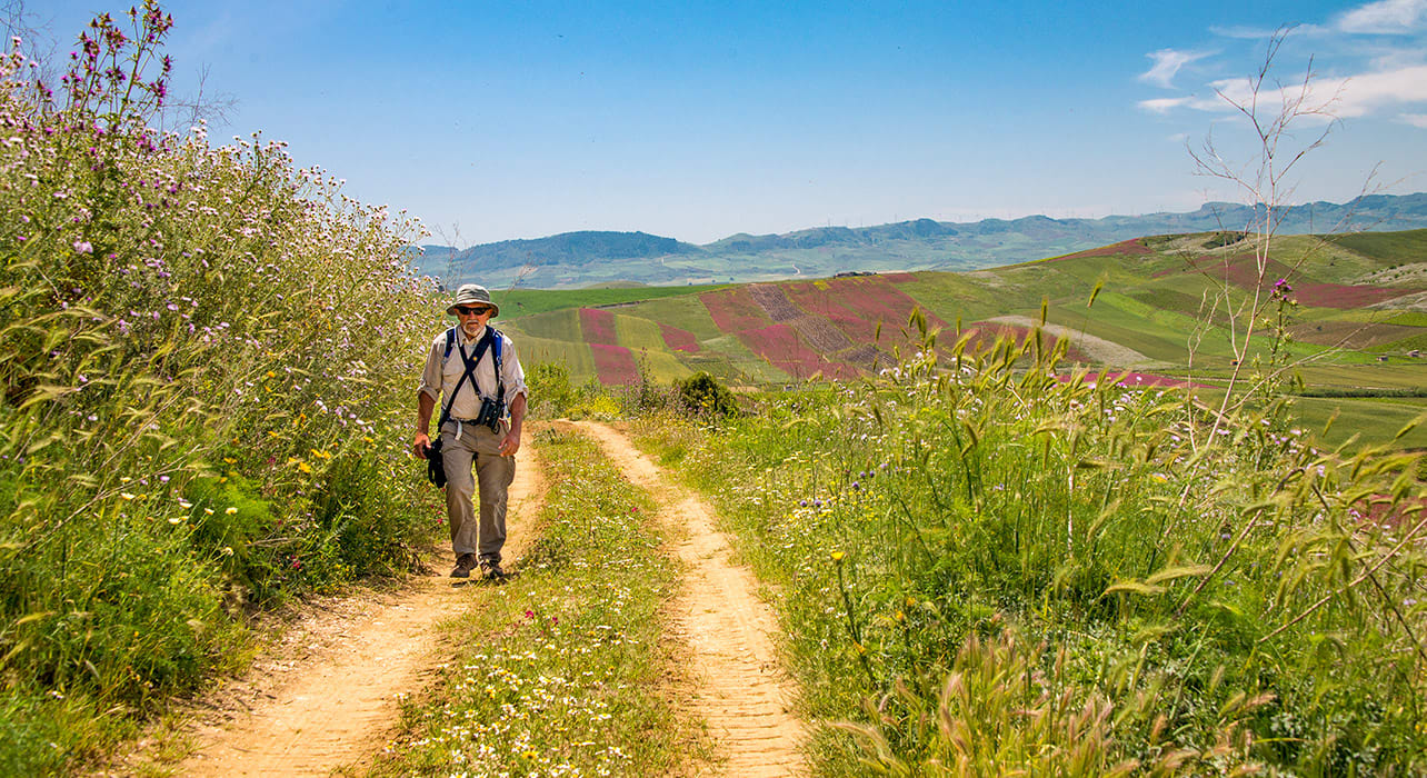 sicily man hiking among wildflowers