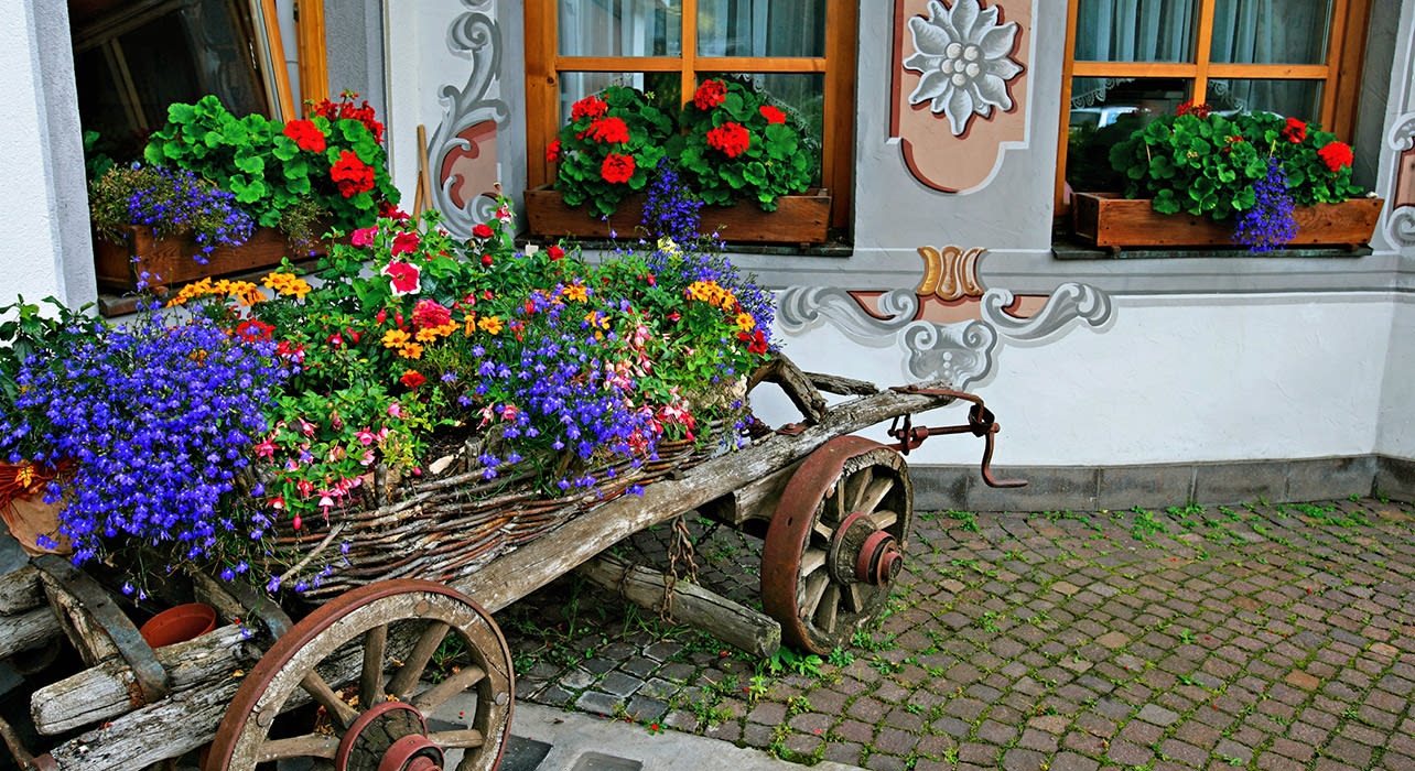 cortina dolomites traditional cart flowers