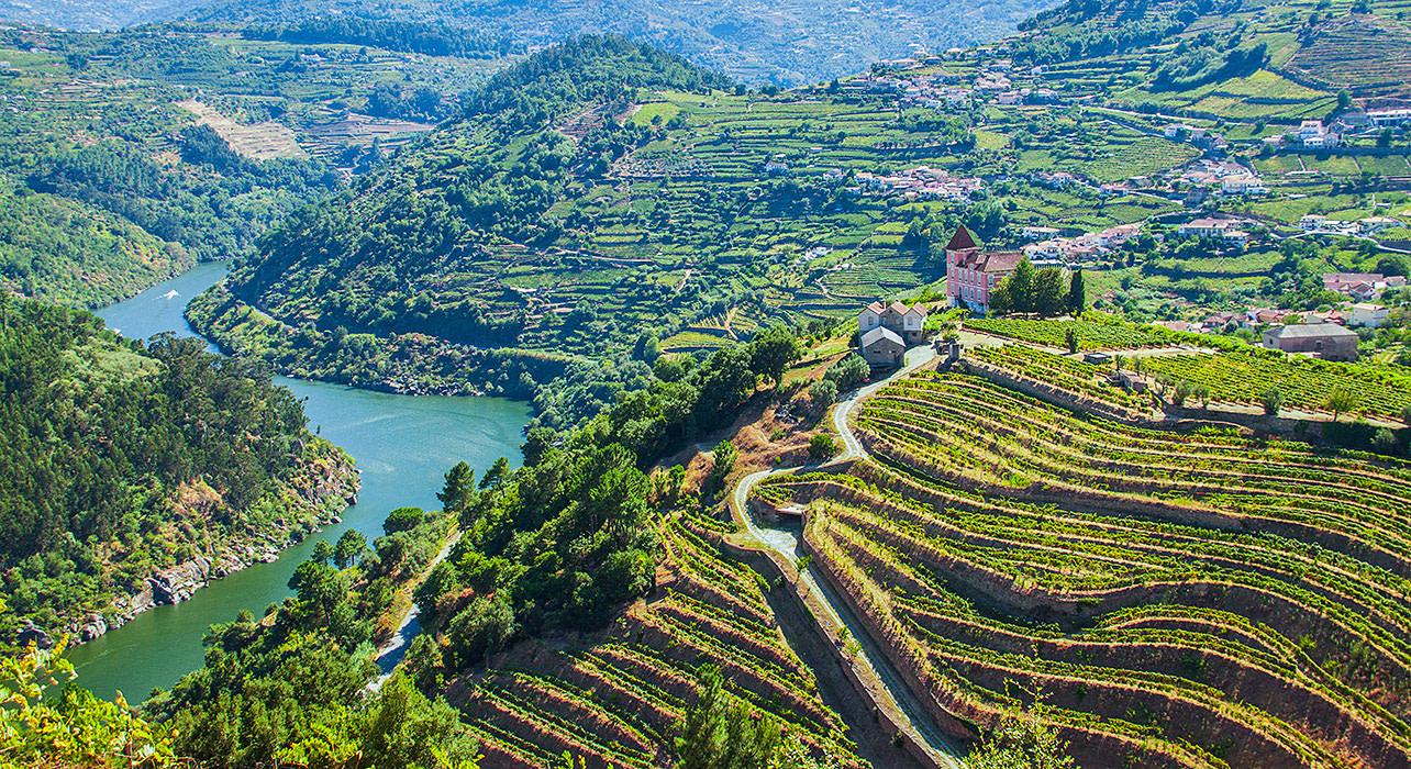 portugal douro river landscape hillside