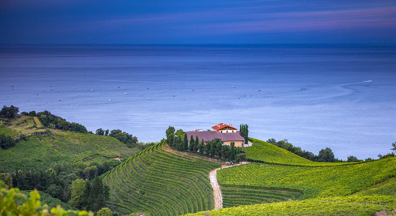 gaiteros vineyards spain sea