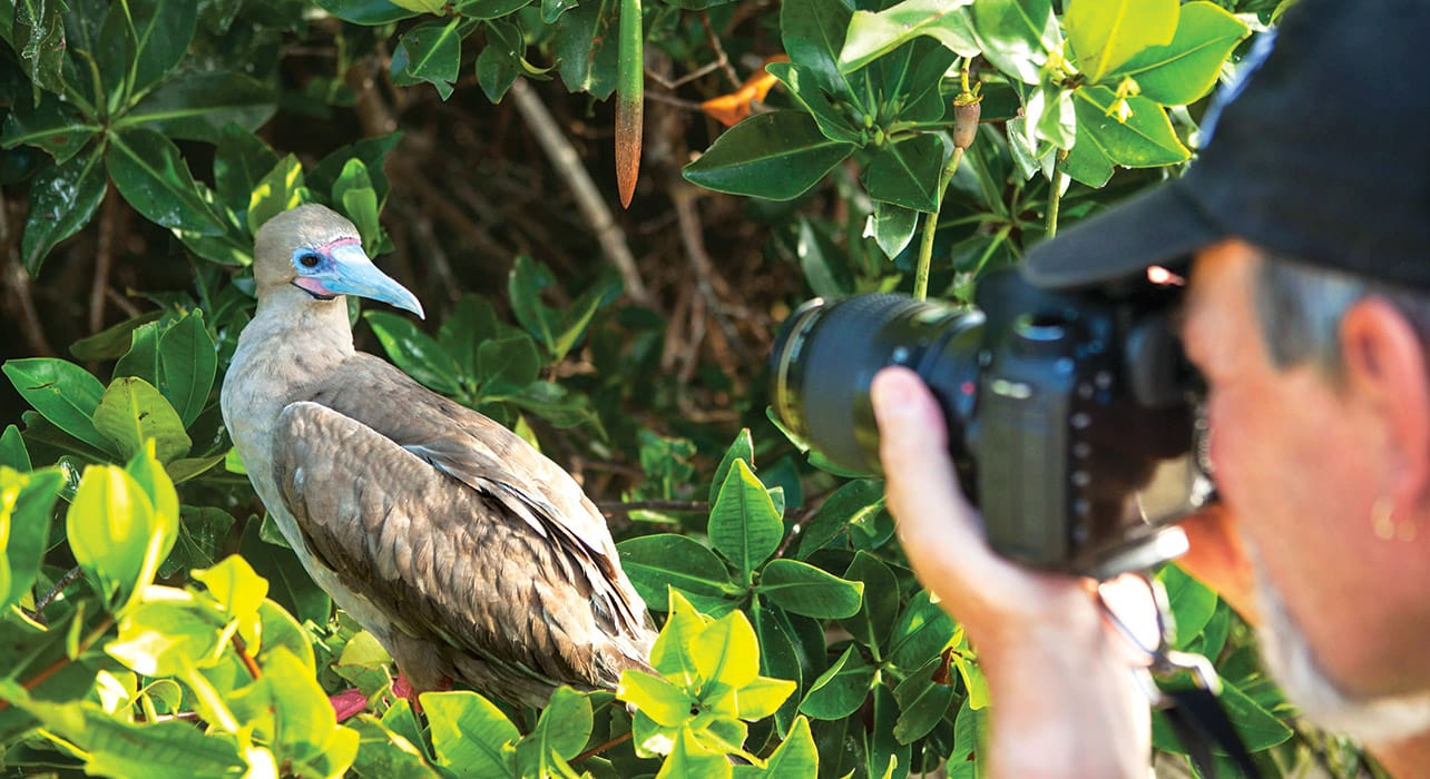 galapagos adventure man photographing red footed booby