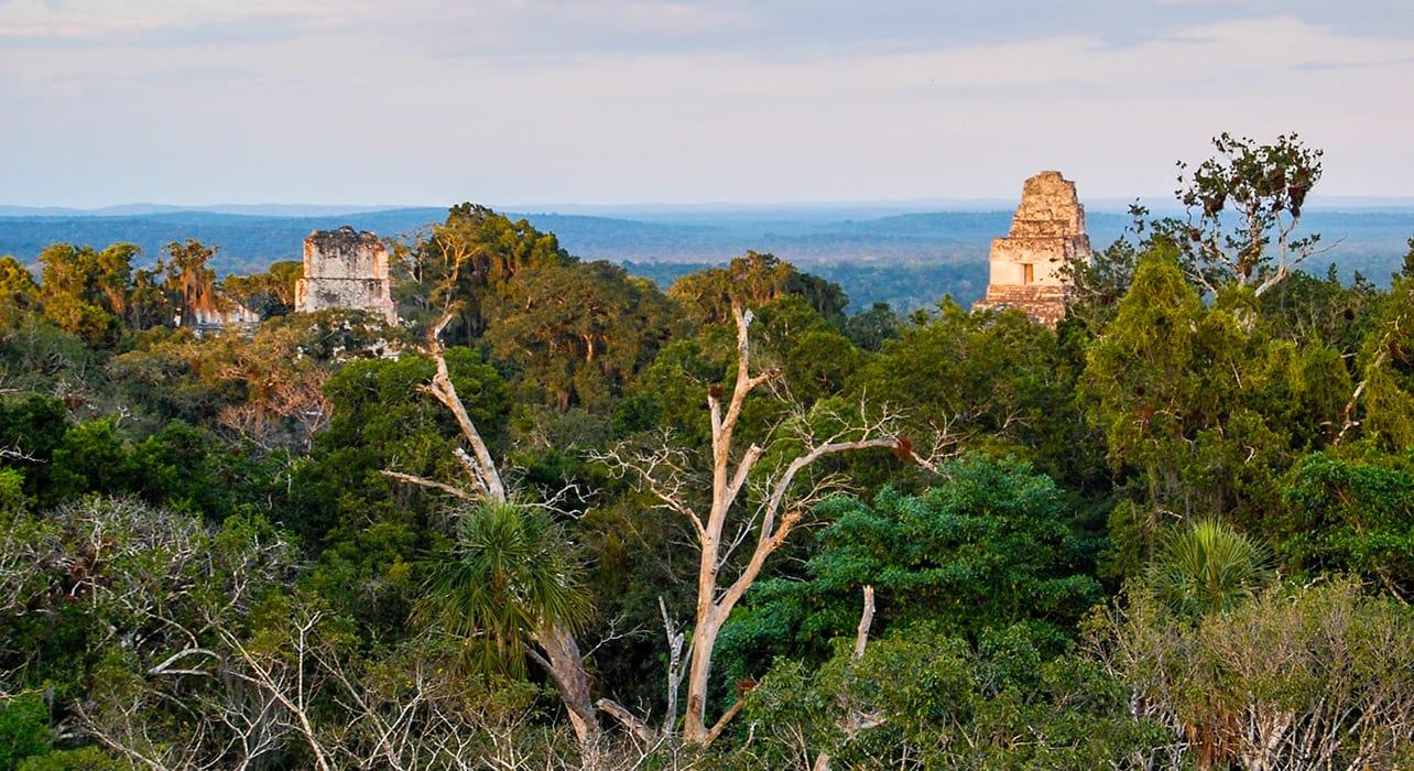 tikal ruins guitemala treeline