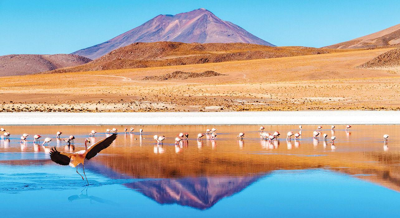 2 slide salta argentina flamingo lake pano