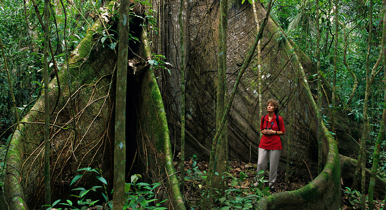 costa rica woman among roots