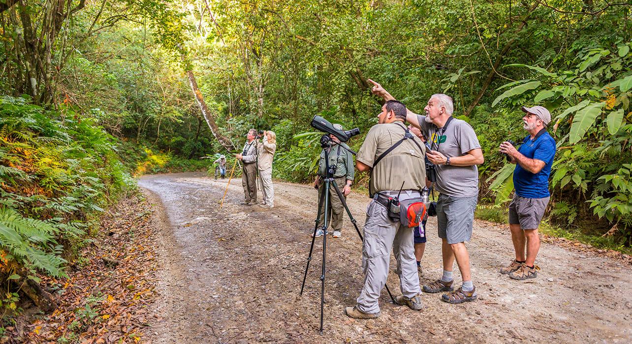 2 slide costa rica naturalist spotting wildlife pano