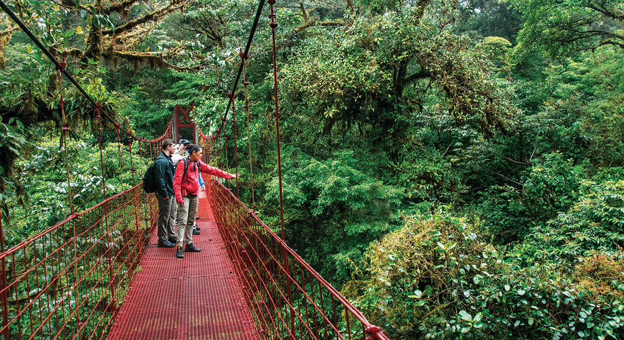 costa rica canopy hanging bridge