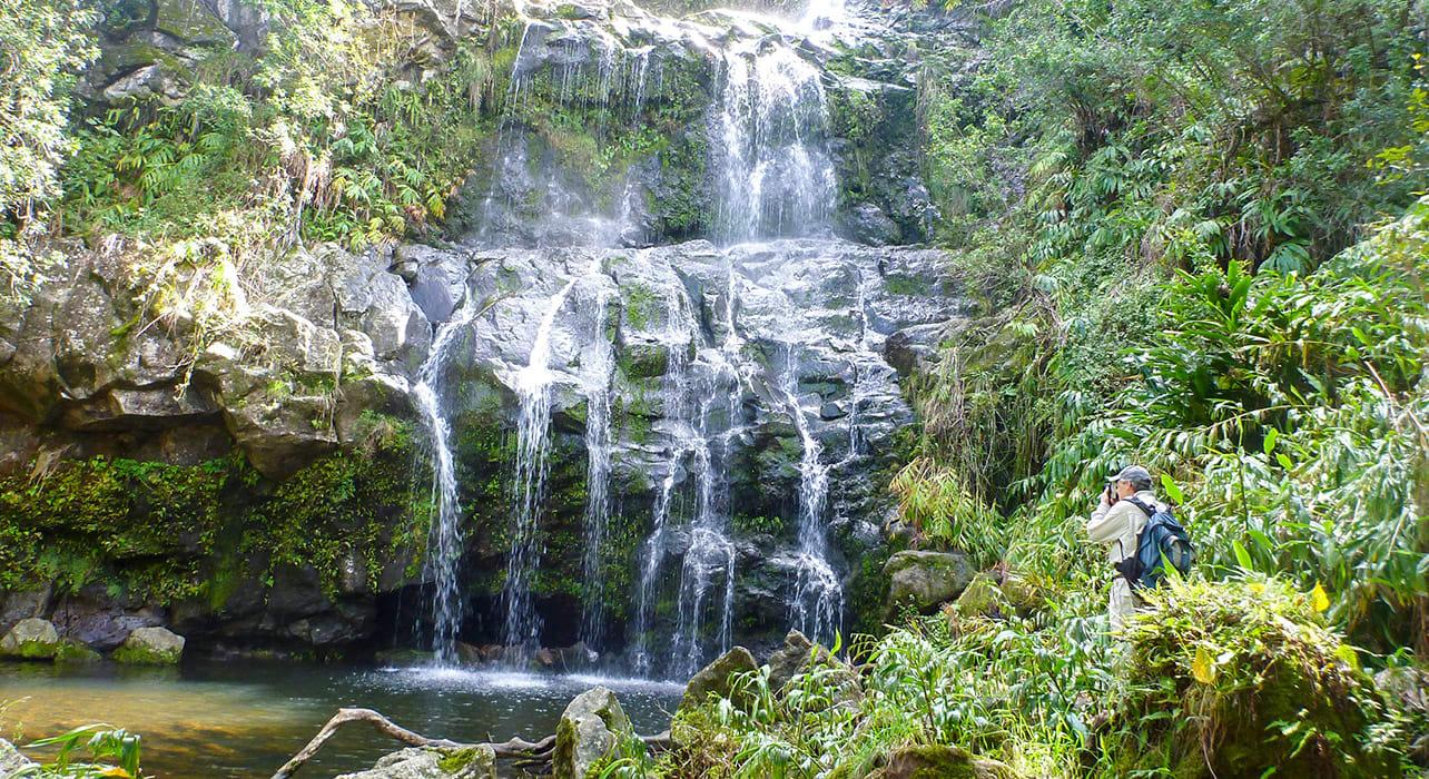 hawaii waterfall nature