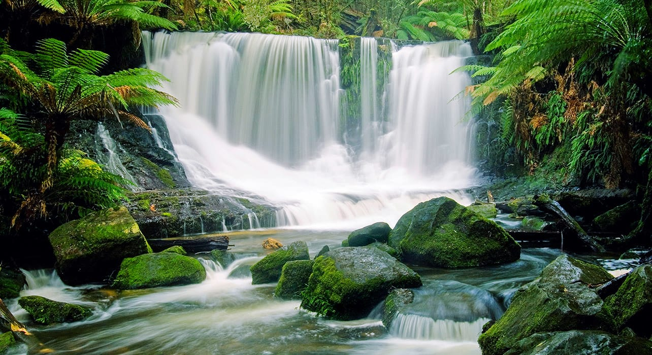 tasmania horseshoe waterfall nature