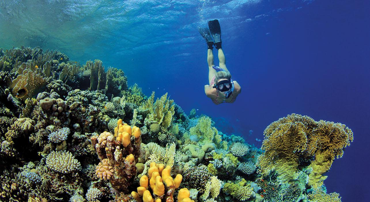 woman snorkeling coral reef