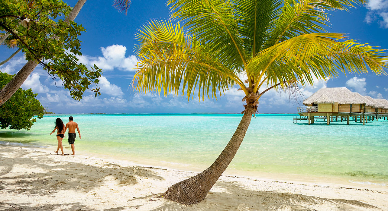 french polynesia tahiti couple on beach palm trees