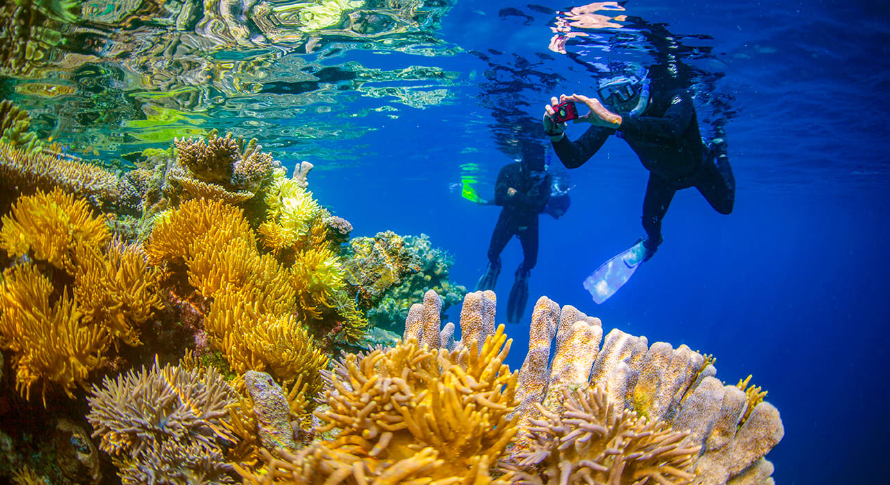 indonesia snorkeling photographing coral reef